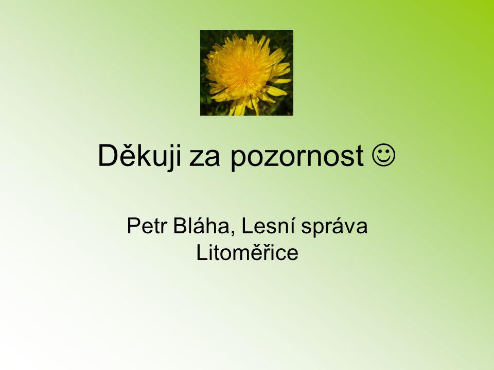Petr Bláha, Lesní správa Litoměřice
