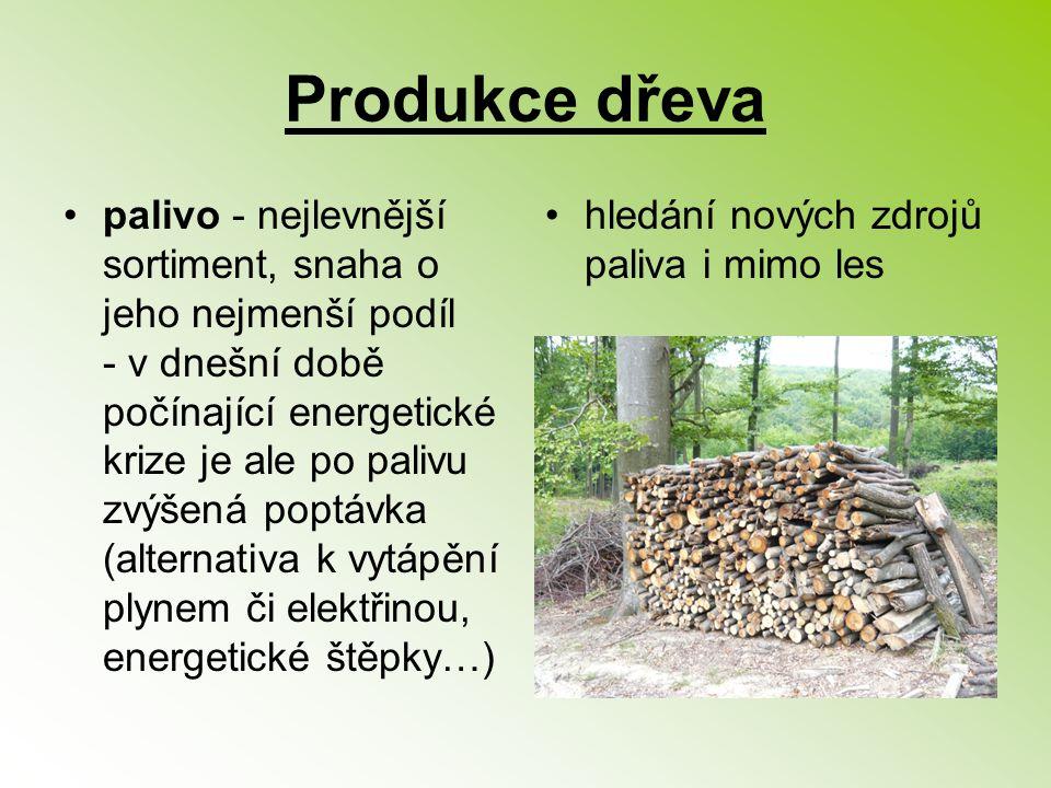 Produkce dřeva