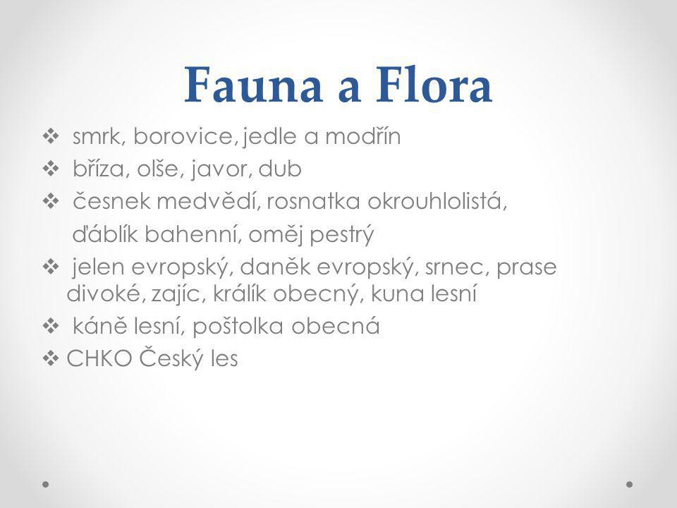 Fauna a Flora smrk, borovice, jedle a modřín bříza, olše, javor, dub