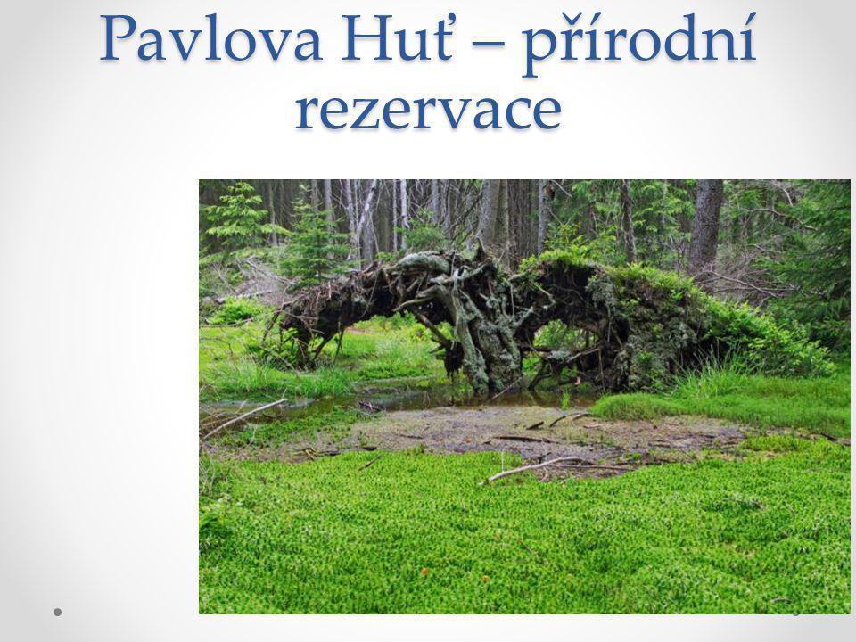 Pavlova Huť – přírodní rezervace