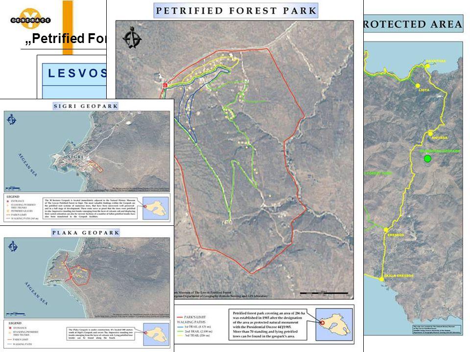 """""""Petrified Forest – Zkamenělý les"""
