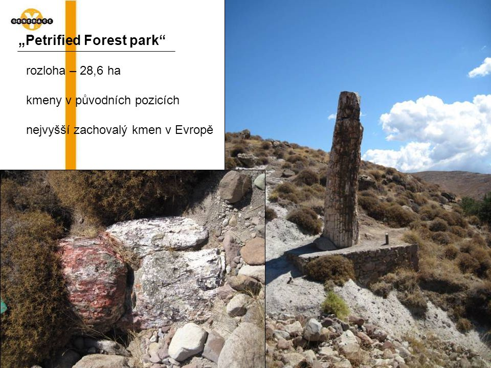 """Petrified Forest park"