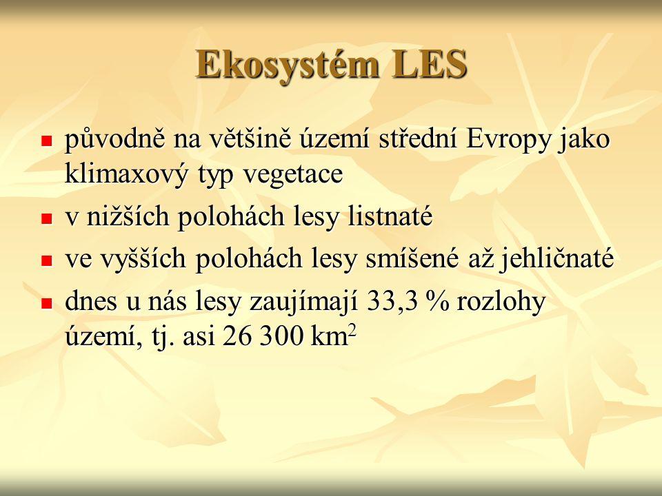 Ekosystém LES původně na většině území střední Evropy jako klimaxový typ vegetace. v nižších polohách lesy listnaté.