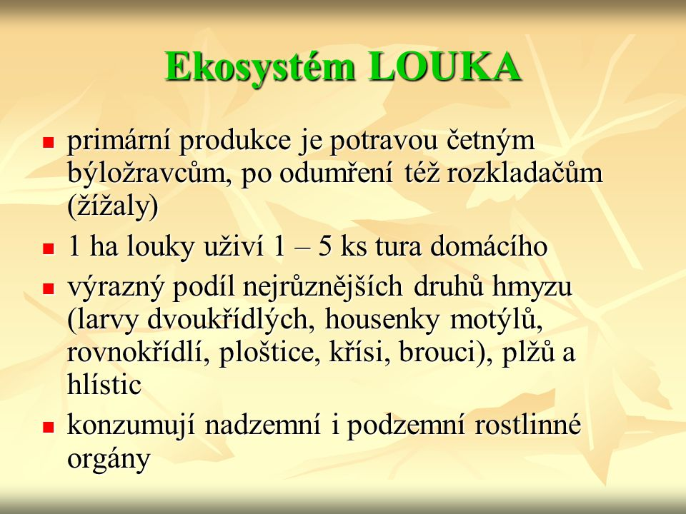 Ekosystém LOUKA primární produkce je potravou četným býložravcům, po odumření též rozkladačům (žížaly)