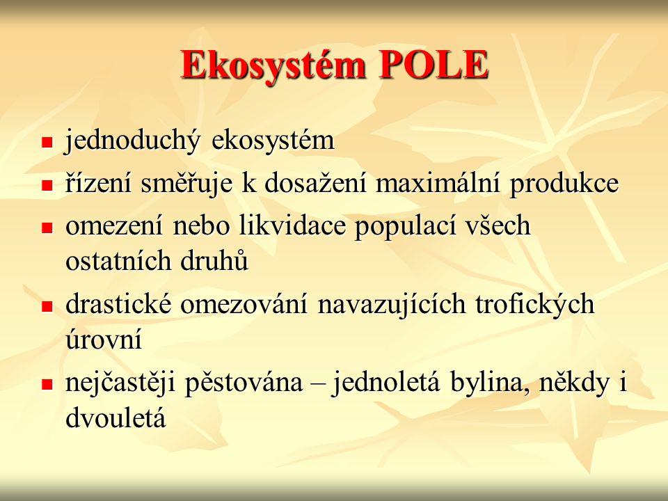 Ekosystém POLE jednoduchý ekosystém