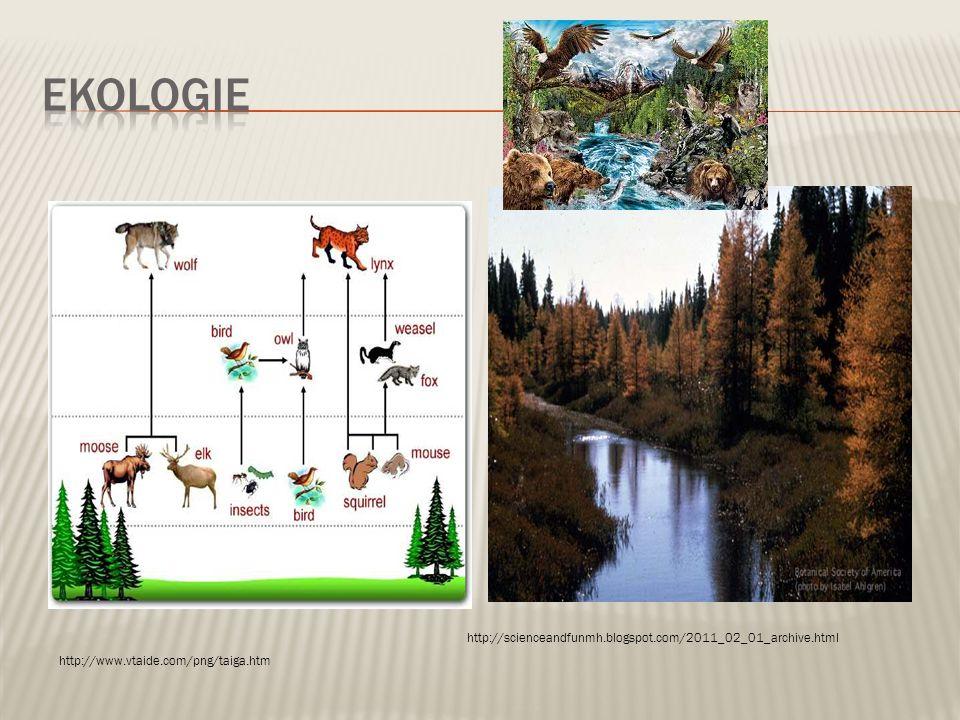 ekologie http://scienceandfunmh.blogspot.com/2011_02_01_archive.html