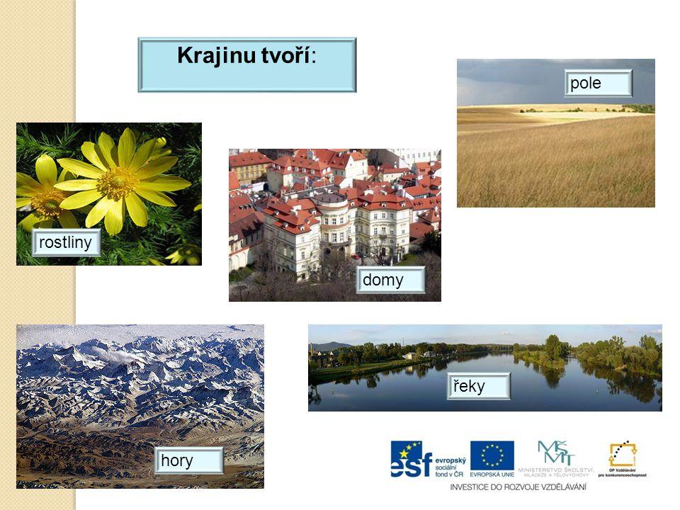 Krajinu tvoří: pole rostliny domy hory řeky