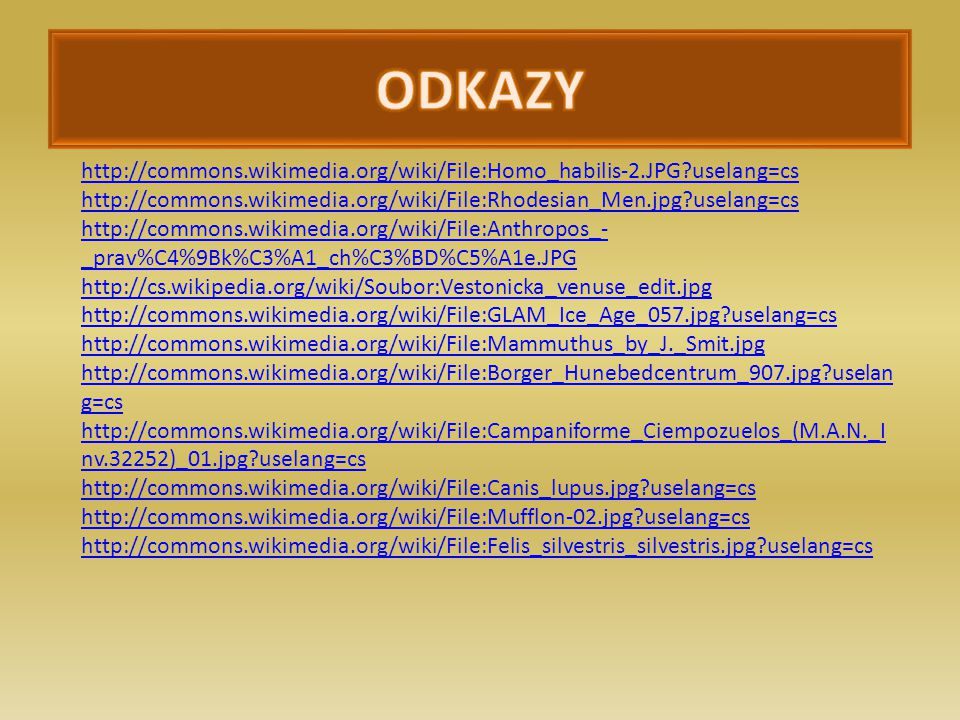 ODKAZY http://commons.wikimedia.org/wiki/File:Homo_habilis-2.JPG?uselang=cs. http://commons.wikimedia.org/wiki/File:Rhodesian_Men.jpg?uselang=cs.