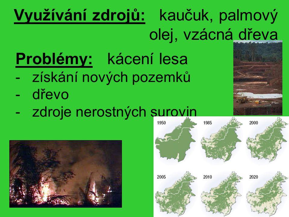 Využívání zdrojů: kaučuk, palmový olej, vzácná dřeva