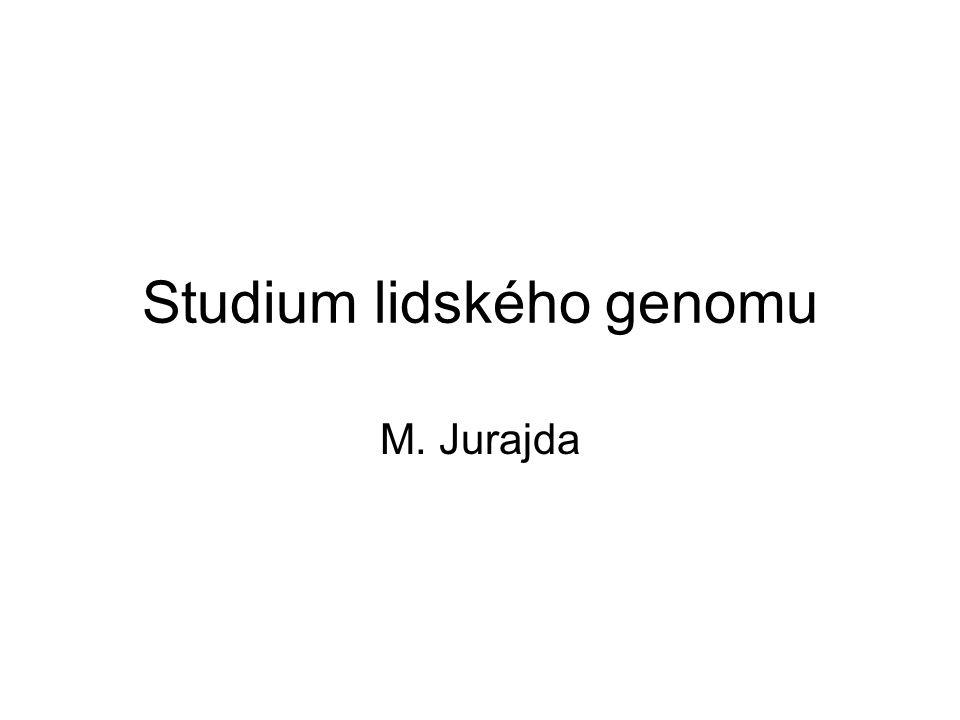 Studium lidského genomu
