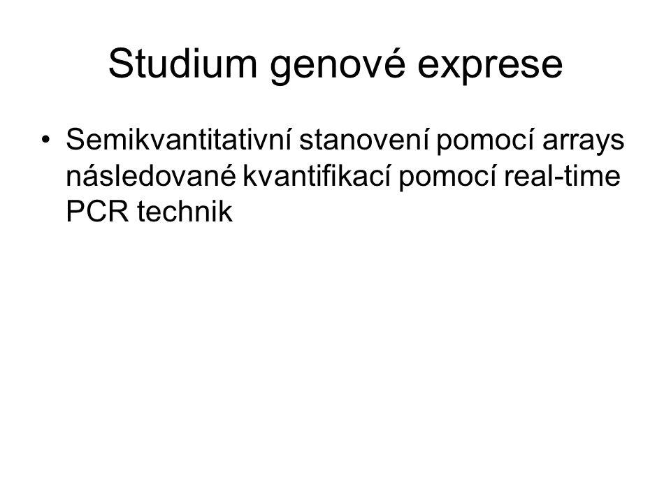 Studium genové exprese