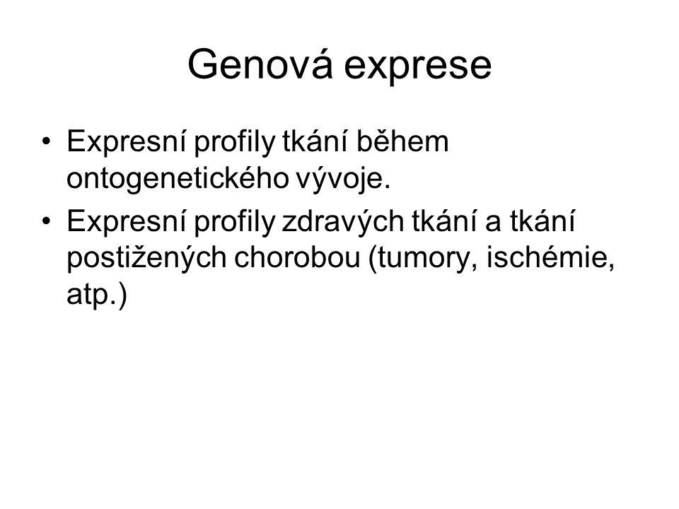 Genová exprese Expresní profily tkání během ontogenetického vývoje.