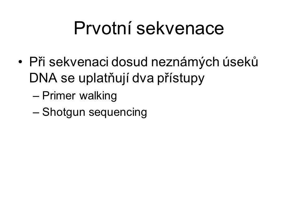Prvotní sekvenace Při sekvenaci dosud neznámých úseků DNA se uplatňují dva přístupy. Primer walking.