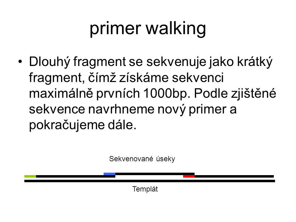 primer walking