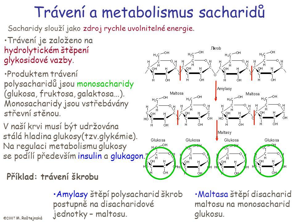 Trávení a metabolismus sacharidů