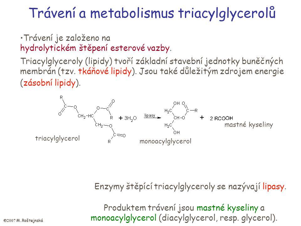 Trávení a metabolismus triacylglycerolů