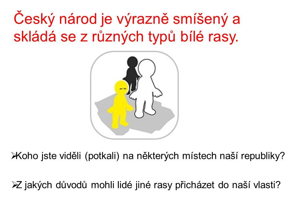 Český národ je výrazně smíšený a skládá se z různých typů bílé rasy.