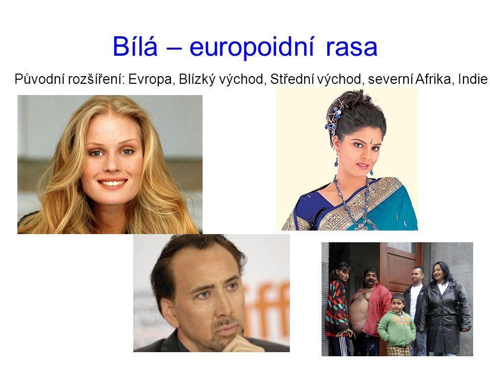 Bílá – europoidní rasa Původní rozšíření: Evropa, Blízký východ, Střední východ, severní Afrika, Indie.