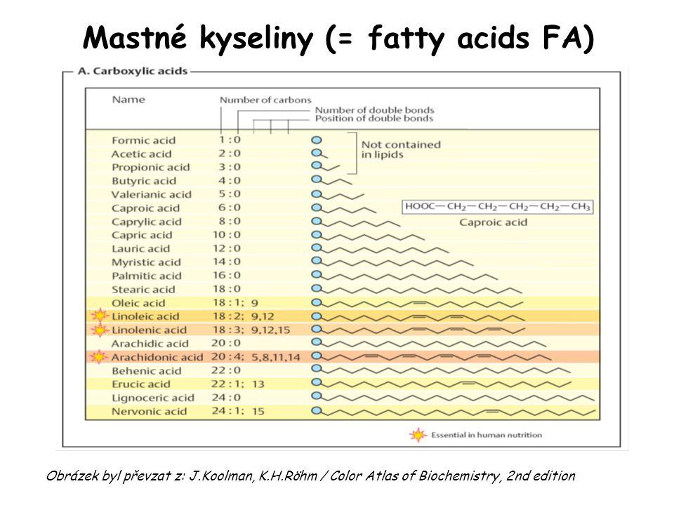 Mastné kyseliny (= fatty acids FA)