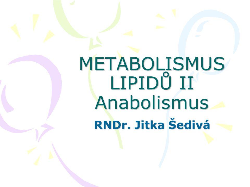 METABOLISMUS LIPIDŮ II Anabolismus