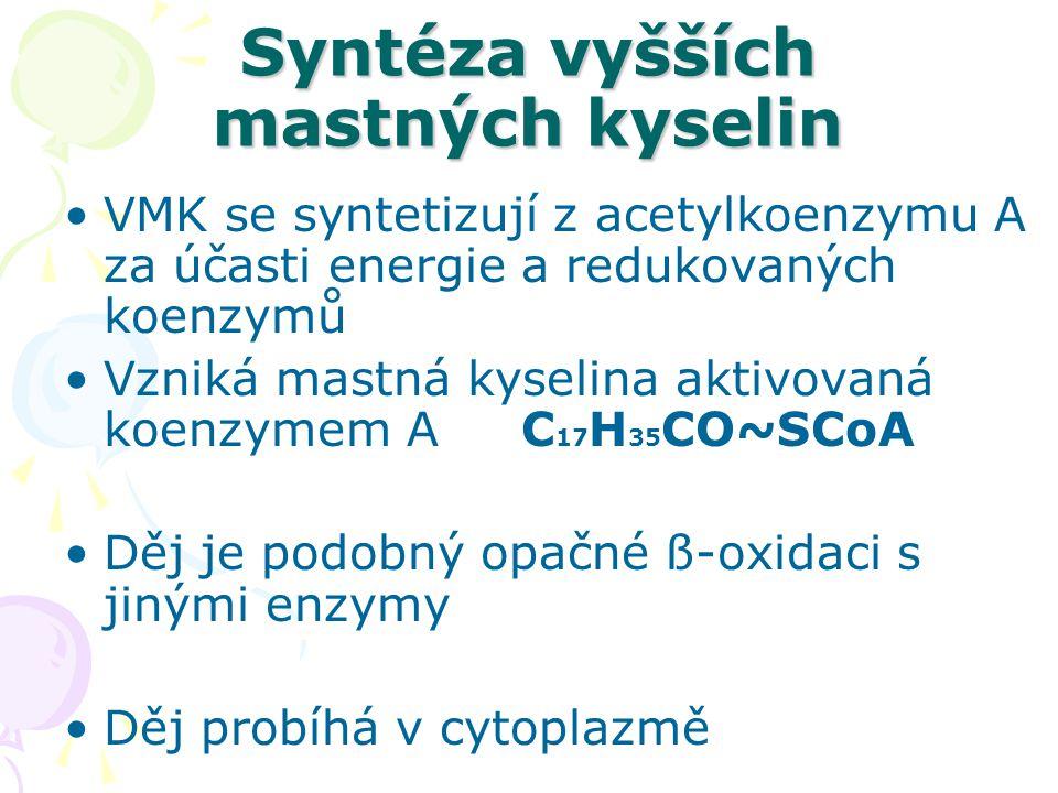 Syntéza vyšších mastných kyselin