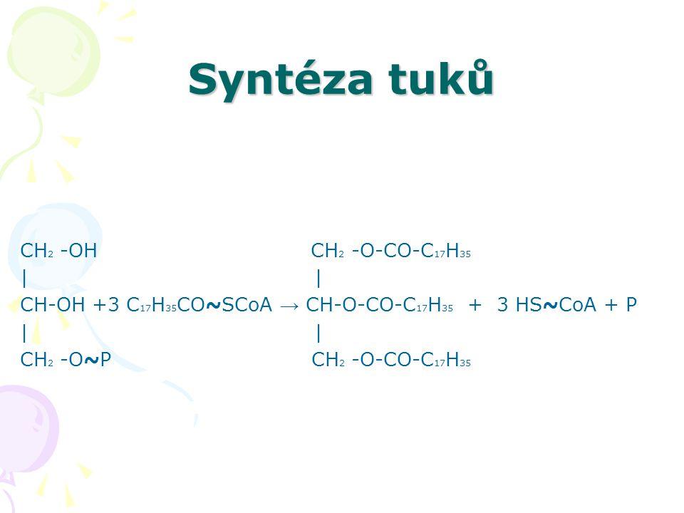 Syntéza tuků CH2 -OH CH2 -O-CO-C17H35 | |