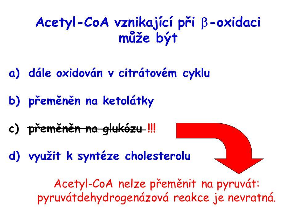 Acetyl-CoA vznikající při -oxidaci může být