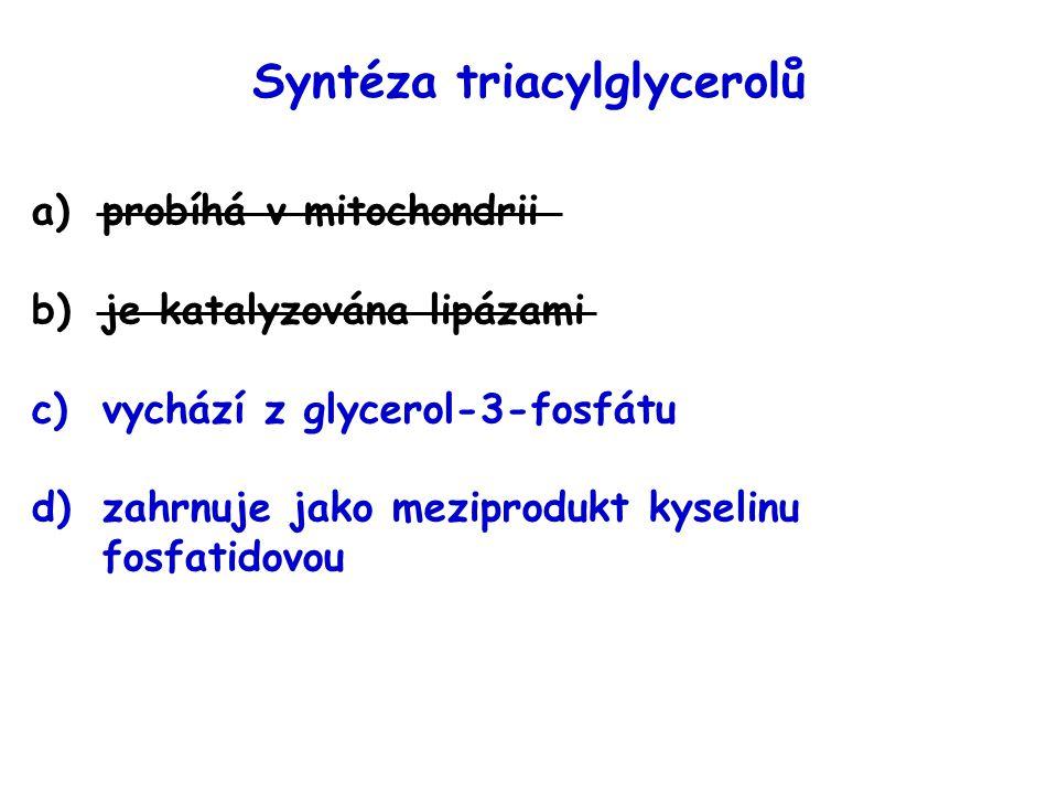 Syntéza triacylglycerolů