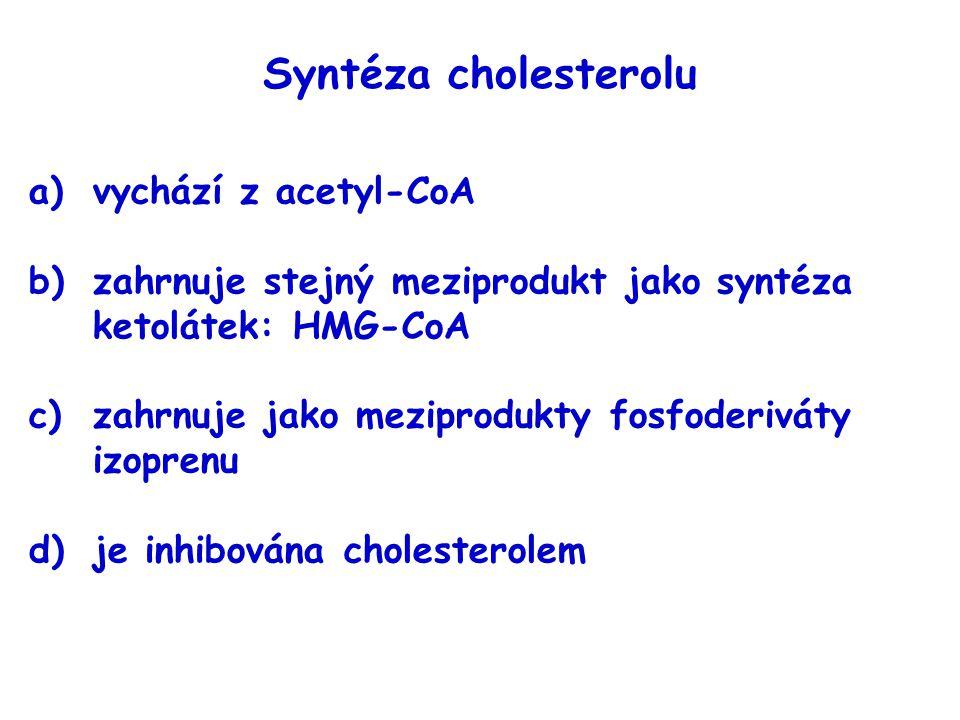 Syntéza cholesterolu vychází z acetyl-CoA
