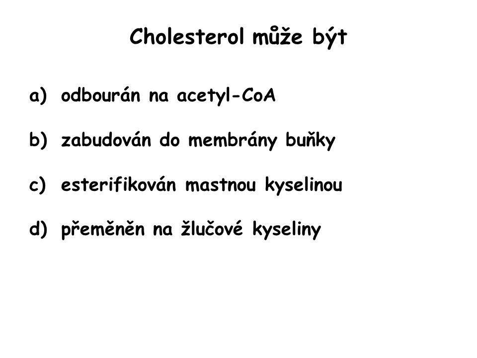 Cholesterol může být odbourán na acetyl-CoA