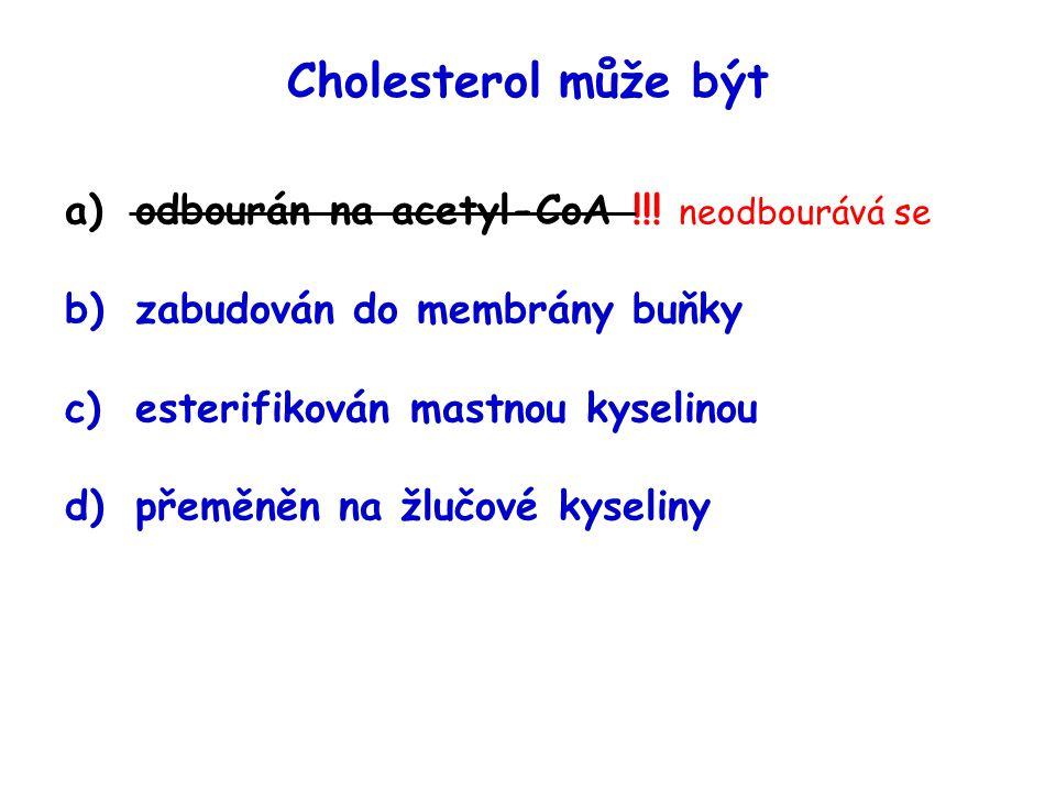 Cholesterol může být odbourán na acetyl-CoA !!! neodbourává se