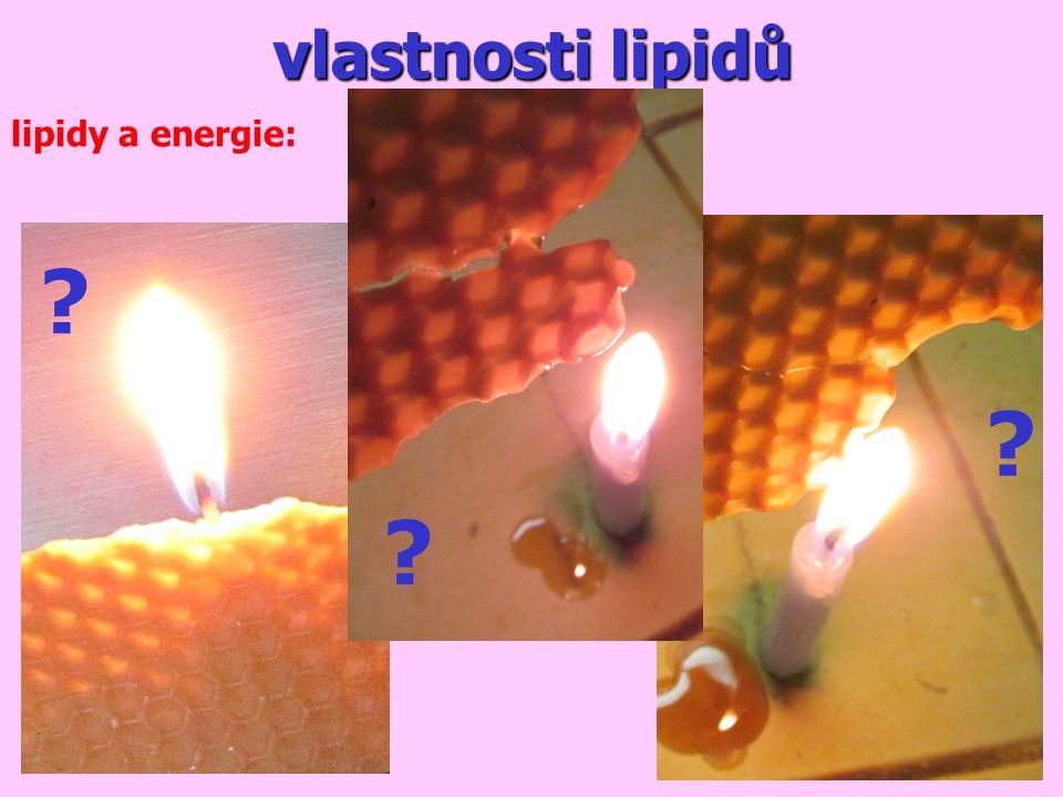 vlastnosti lipidů lipidy a energie:
