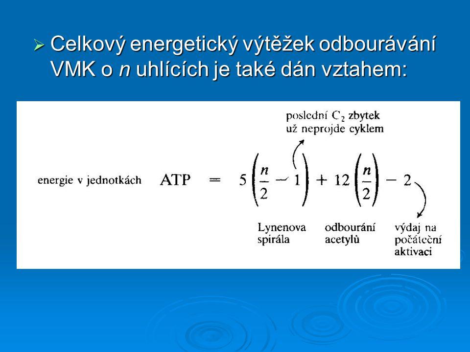 Celkový energetický výtěžek odbourávání VMK o n uhlících je také dán vztahem: