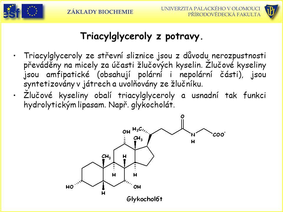 Triacylglyceroly z potravy.