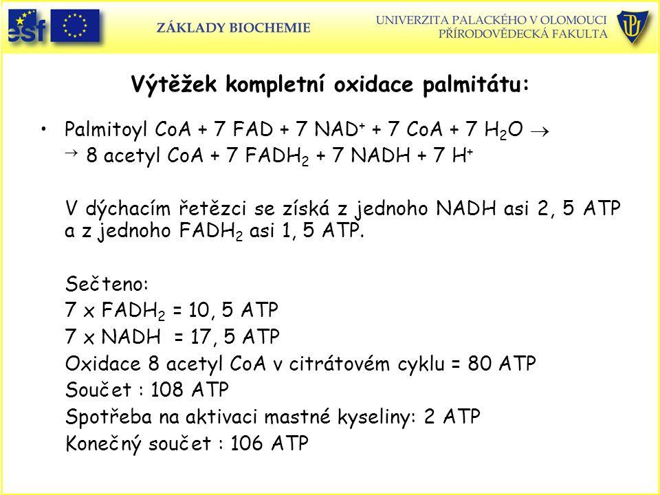 Výtěžek kompletní oxidace palmitátu: