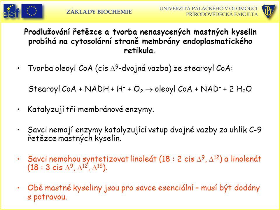 Stearoyl CoA + NADH + H+ + O2 ® oleoyl CoA + NAD+ + 2 H2O