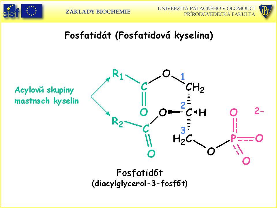 Fosfatidát (Fosfatidová kyselina)