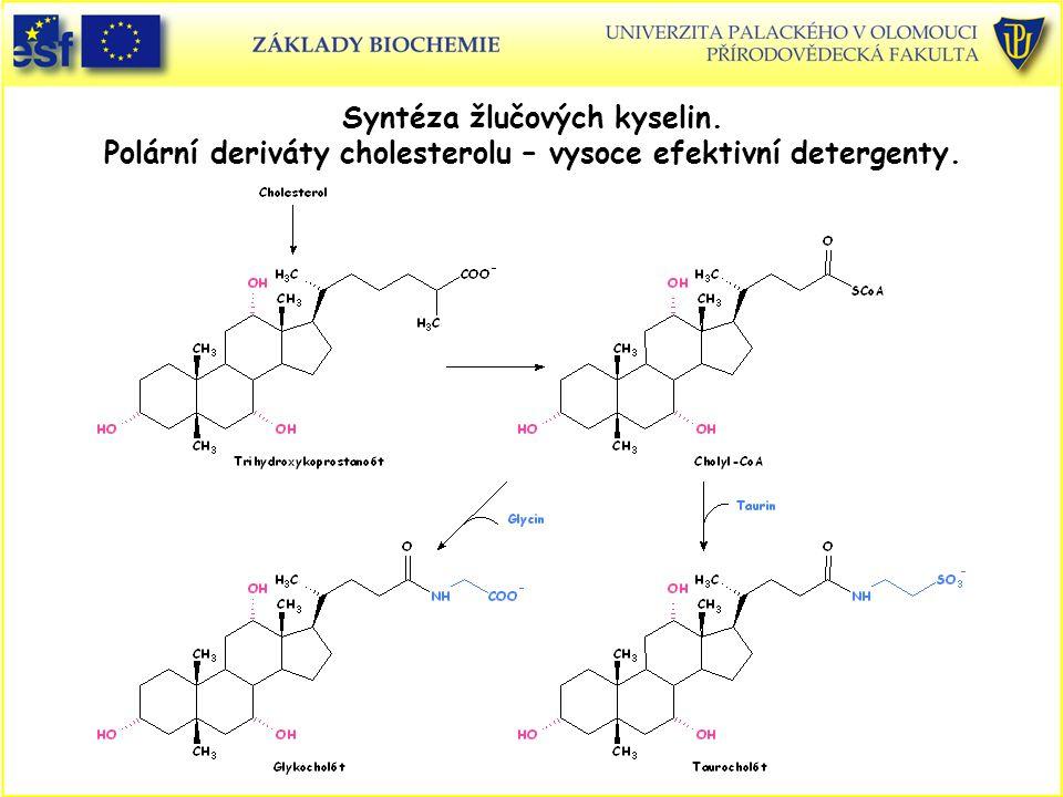 Syntéza žlučových kyselin