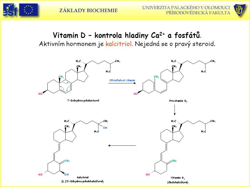Vitamin D – kontrola hladiny Ca2+ a fosfátů