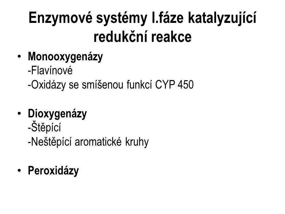 Enzymové systémy I.fáze katalyzující redukční reakce