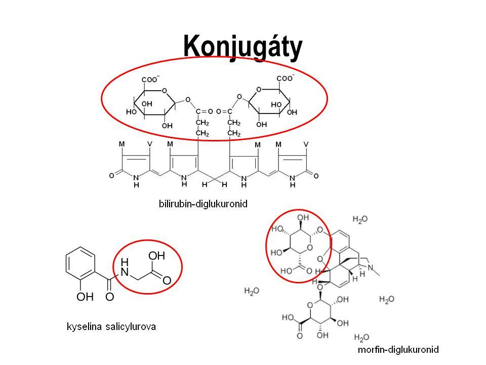 Konjugáty Červeně vyznačena část molekuly s konjugačním činidlem.