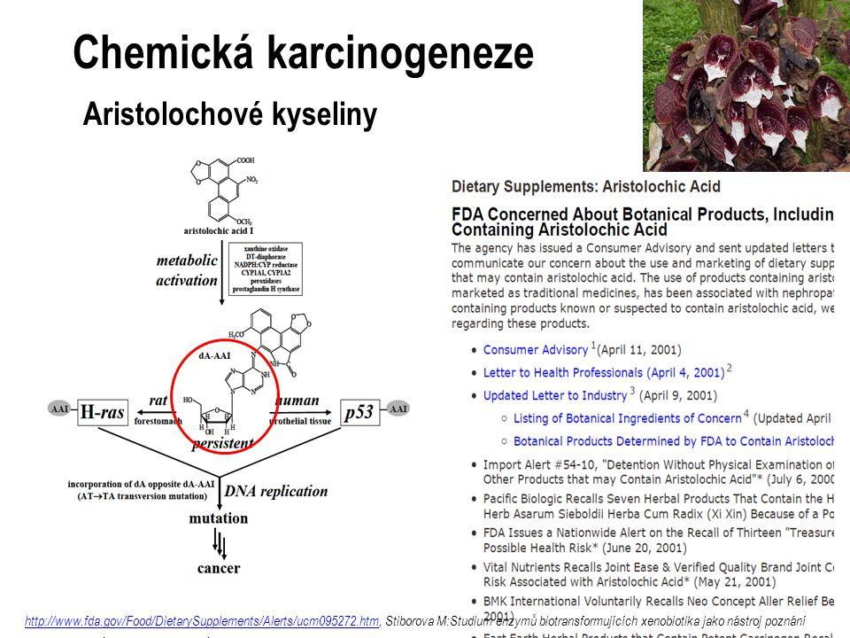 Chemická karcinogeneze Aristolochové kyseliny
