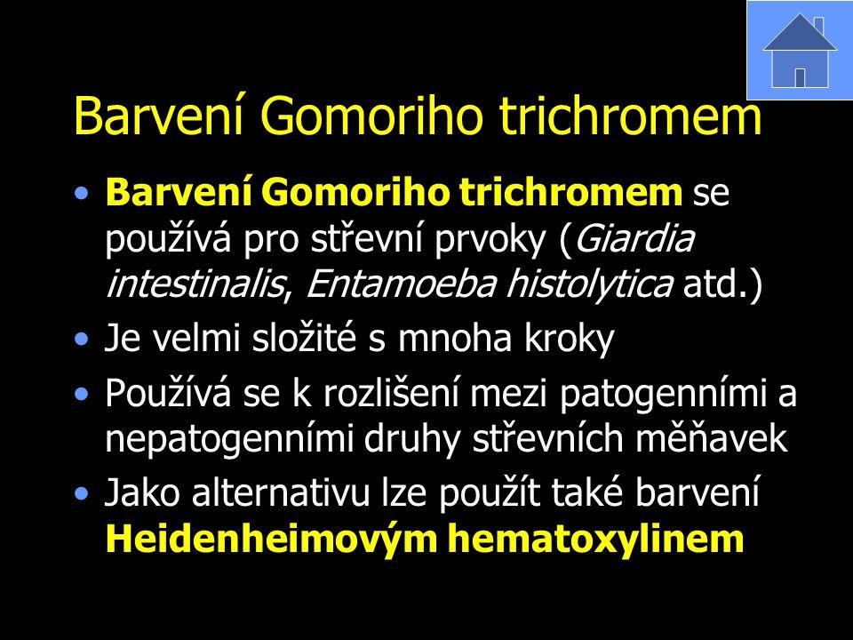 Barvení Gomoriho trichromem