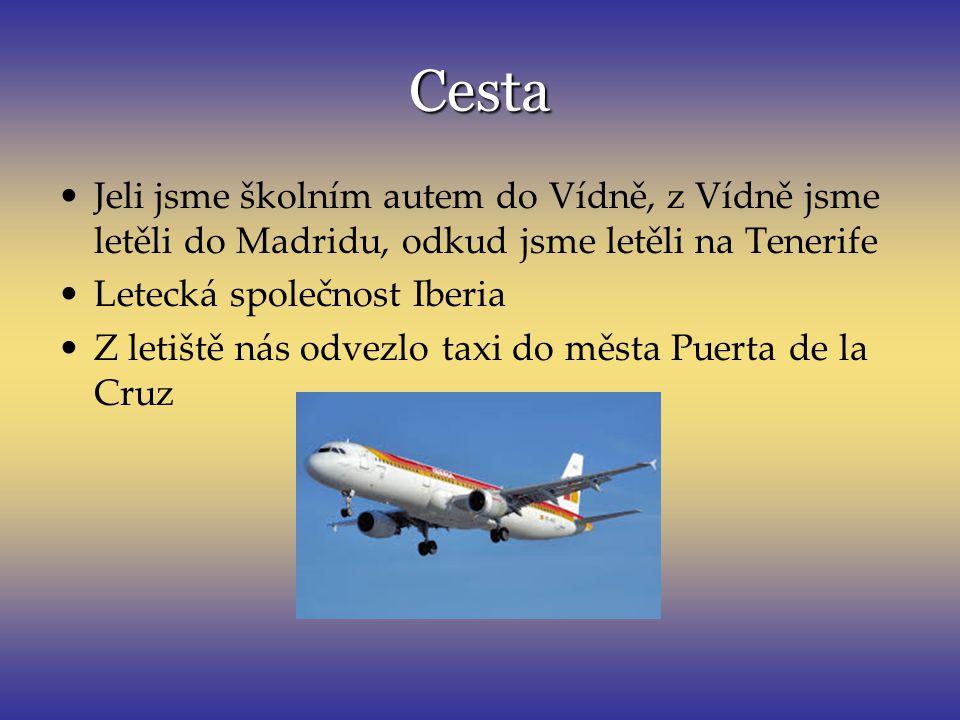 Cesta Jeli jsme školním autem do Vídně, z Vídně jsme letěli do Madridu, odkud jsme letěli na Tenerife.