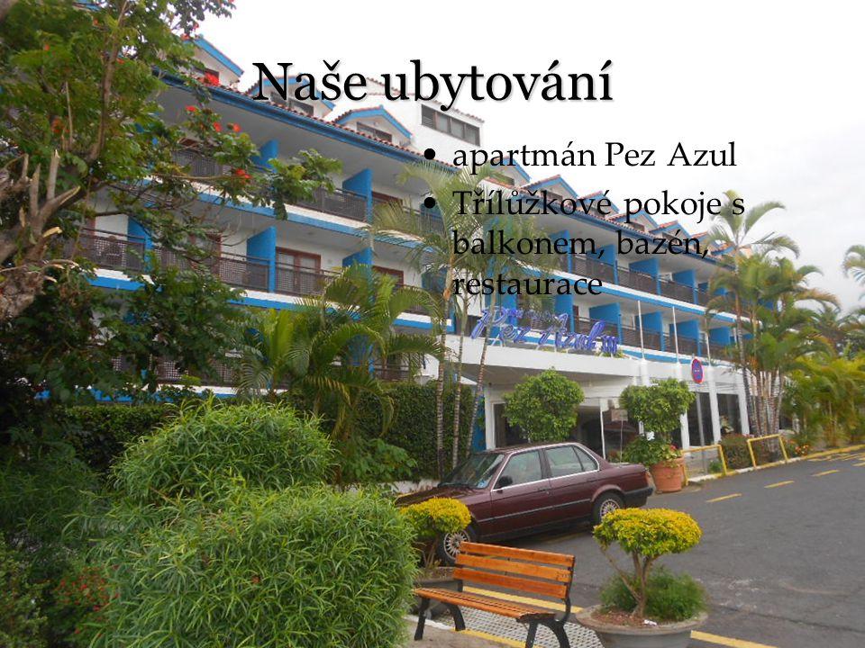 Naše ubytování apartmán Pez Azul