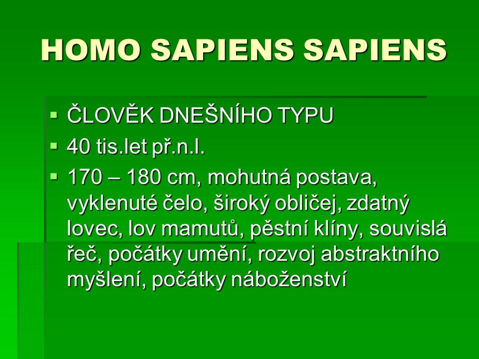 HOMO SAPIENS SAPIENS ČLOVĚK DNEŠNÍHO TYPU 40 tis.let př.n.l.