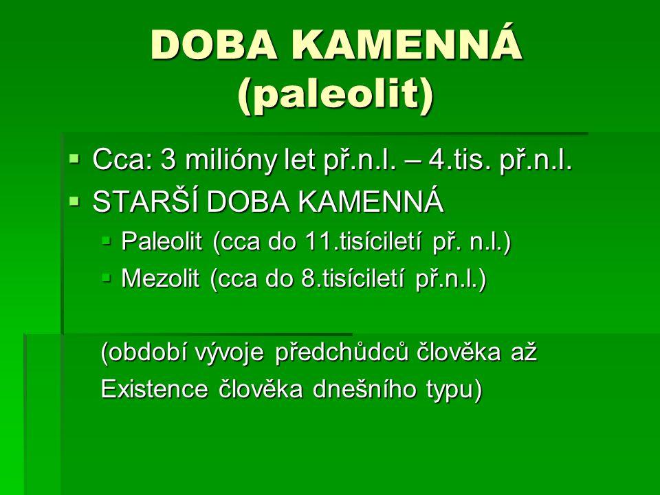 DOBA KAMENNÁ (paleolit)