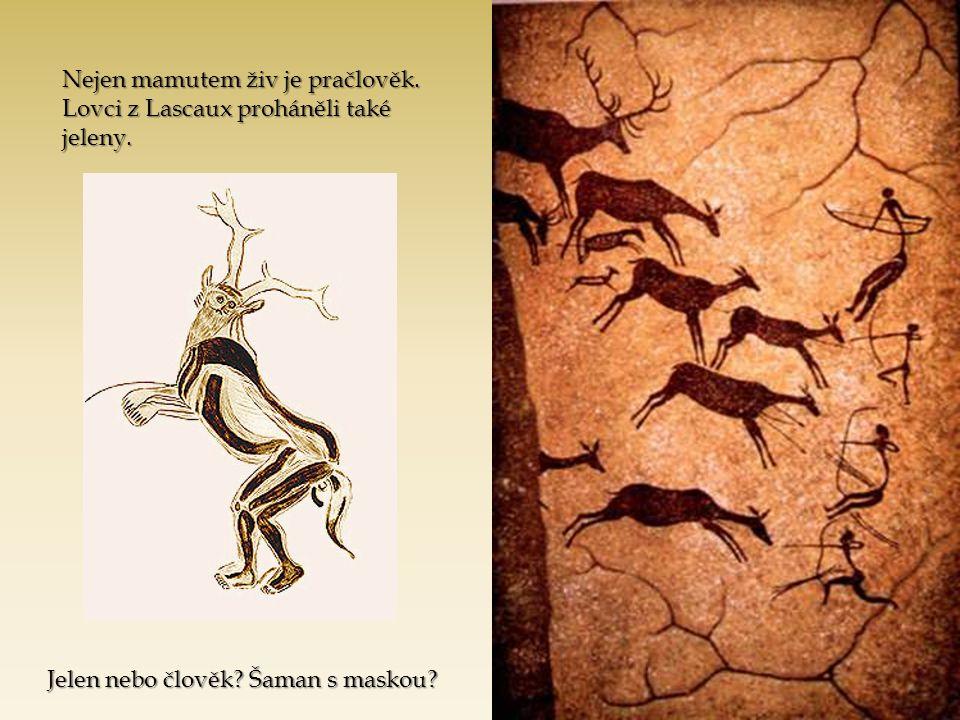 Nejen mamutem živ je pračlověk. Lovci z Lascaux proháněli také jeleny.