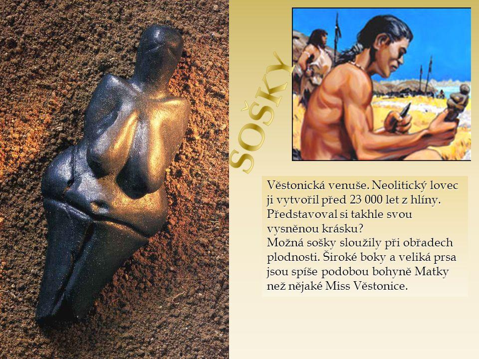 SOŠKY Věstonická venuše. Neolitický lovec ji vytvořil před 23 000 let z hlíny. Představoval si takhle svou vysněnou krásku
