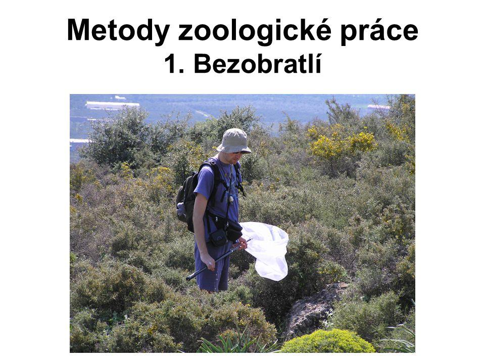 Metody zoologické práce 1. Bezobratlí